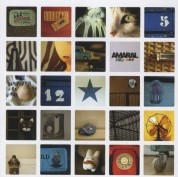 Amaral 1998 - 2008 - CD