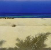 Paul Brown: White Sand - CD