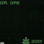 Dr. Dre: 2001 - Plak