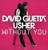 David Guetta: Without You - Single Plak