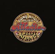 Blind Willie Mctell: Atlanta 12 String - Plak