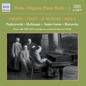 Welte-Mignon Piano Rolls, Vol.  1 (1905-1927) - CD