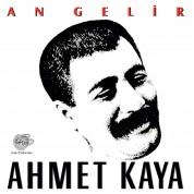 Ahmet Kaya: An Gelir - Plak