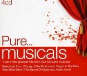 Çeşitli Sanatçılar: Pure...Musicals - CD