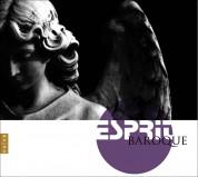Çeşitli Sanatçılar: Esprit Baroque - CD