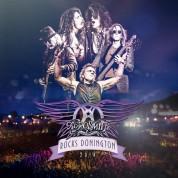 Aerosmith: Rocks Donington 2014 (Limited Edition - Translucent Purple Vinyl) - Plak