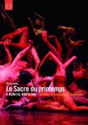 Kiyoko Kimura, Giovanni di Palma, Leipzig Ballet, Leipzig Gewandhaus Orchestra, Henrik Schaefer: Stravinsky: Le Sacre du printemps (a ballet by Uwe Scholz) + Documentary - DVD
