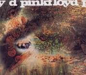 Pink Floyd: A Saucerful of Secrets - CD