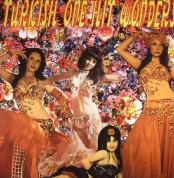 Çeşitli Sanatçılar: Turkish One Hit Wonders - Plak