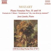 Mozart: Piano Sonatas Nos. 11 and 14 / Fantasia in C Minor - CD
