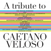 Çeşitli Sanatçılar: A Tribute To Caetano Veloso - CD
