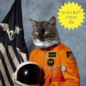 Klaxons: Surfing The Void - CD