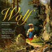 Christiane Oelze, Hans-Peter Blochwitz, Rudolf Jansen, Siegfried Lorentz, Norman Shetler: Wolf: Italienisches Liederbuch, Mörike-Lieder - CD