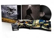 David Gilmour: Rattle That Lock - Plak