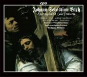 J.S. Bach: St. Luke Passion - CD