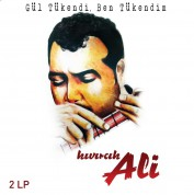 Kıvırcık Ali: Gül Tükendi Ben Tükendim - Plak