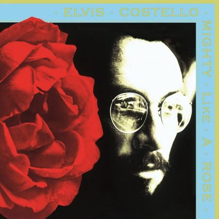 Elvis Costello: Mighty Like A Rose - Plak