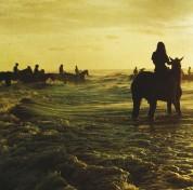 Foals: Holy Fire - Plak