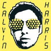 Calvin Harris: I Created Disco - Plak