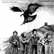 Traffic: When The Eagle Flies - Plak