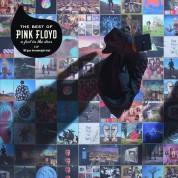 Pink Floyd: The Best Of Pink Floyd: A Foot In The Door - Plak