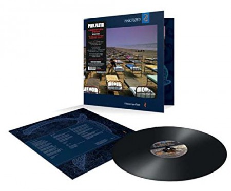 Pink Floyd: A Momentary Lapse Of Reason - Plak
