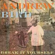 Andrew Bird: Break It Yourself - CD