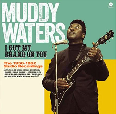 Muddy Waters: I Got My Brand On You - Plak