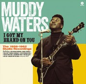 Muddy Waters: I Got My Brand On You - Plak