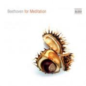 Çeşitli Sanatçılar: Beethoven for Meditation - CD