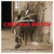 Çeşitli Sanatçılar: Essential Chicago Blues - Plak