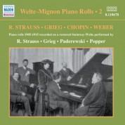 Welte-Mignon Piano Rolls, Vol. 2 (1905-1915) - CD