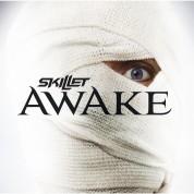 Skillet: Awake - Plak