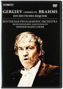 Valery Gergiev: Gergiev Conducts Brahms - DVD
