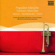 Çeşitli Sanatçılar: Famous Marches - CD