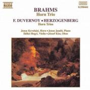 Brahms / Duvernoy / Herzogenberg: Horn Trios - CD