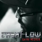 Cashflow: Gayri Meşhur - CD