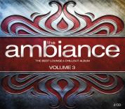 Çeşitli Sanatçılar: The Ambiance Vol.3 - CD