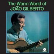 João Gilberto: The Warm World - Plak