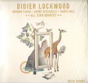 Didier Lockwood: Open Doors - Plak