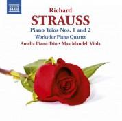 Amelia Piano Trio: Strauss: Piano Trios Nos. 1 & 2 - CD