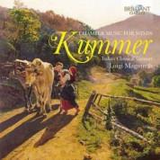 Italian Classical Consort, Luigi Magistrelli, Elena Cecconi, Danilo Zaffaroni, Maria Degl'Innocenti: Kummer: Chamber Music for Winds - CD