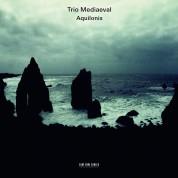 Trio Mediaeval: Aquilonis - CD