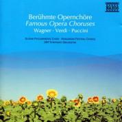 Çeşitli Sanatçılar: Famous Opera Choruses - CD