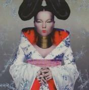 Björk: Homogenic - Plak