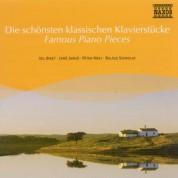 Çeşitli Sanatçılar: Famous Piano Pieces - CD