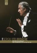 Sergiu Celibidache: Celibidache - 5 DVD Box - DVD