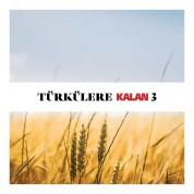 Çeşitli Sanatçılar: Türkülere Kalan 3 - CD