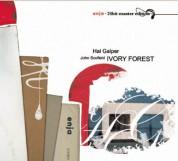 Hal Galper: Ivory Forest - CD