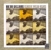 Big Joe Williams: Classic Delta - CD